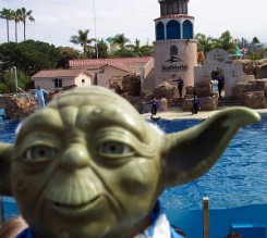 Yoda at Sea World